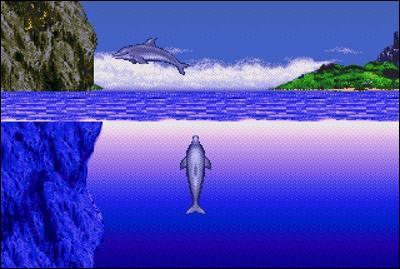 Comment se nomme le dauphin, héros d'une série de jeux vidéo, dont le premier est sorti sur Megadrive ?