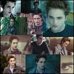 Edward possède : (piège ! )