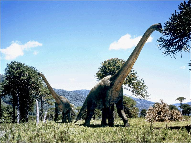 Comment s'appelle le plus lourd dinosaure ?