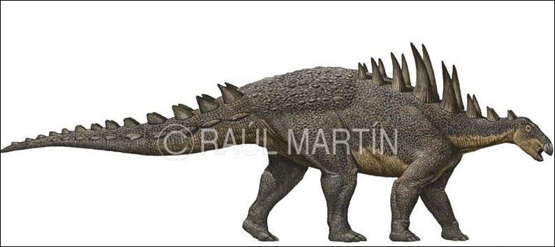 Comment s'appelle cet autre dinosaure cuirassé ?