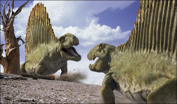 Comment s'appelle l'ancêtre des mamifères ?