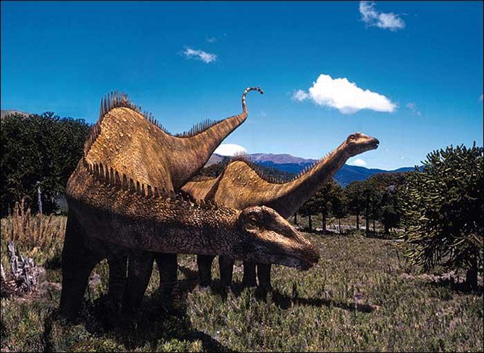 Comment s'appelle le plus long dinosaure ?
