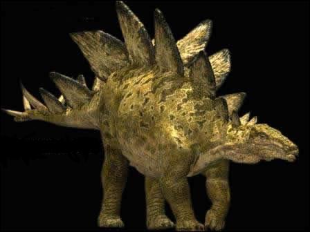 Comment s'appelle ce dinosaure à plaques ?