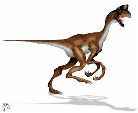 Comment s'appelle ce dinosaure voleur d'oeufs ?