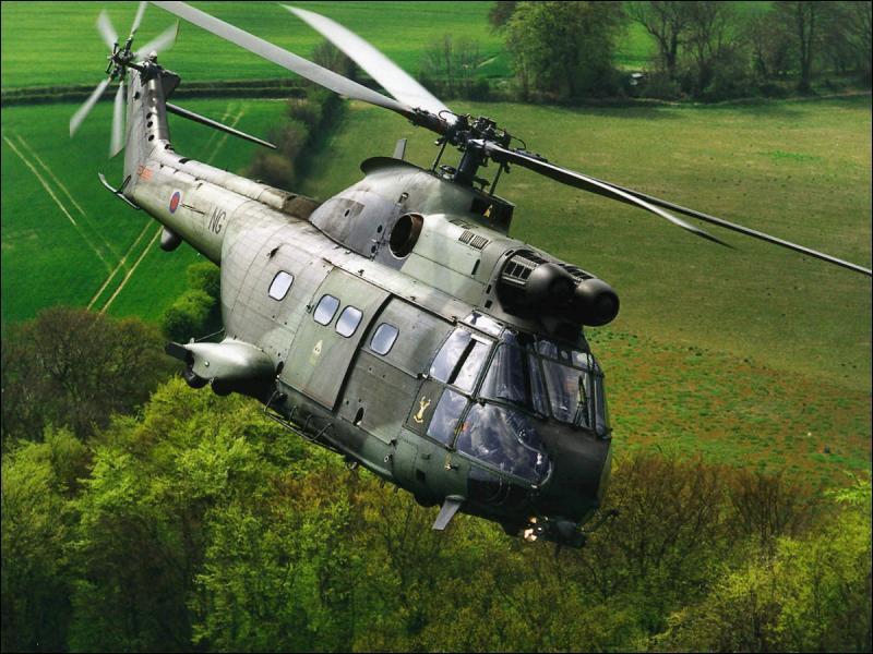 Quel mammifère carnivore d'Amérique porte le même nom qu'un hélicoptère ?
