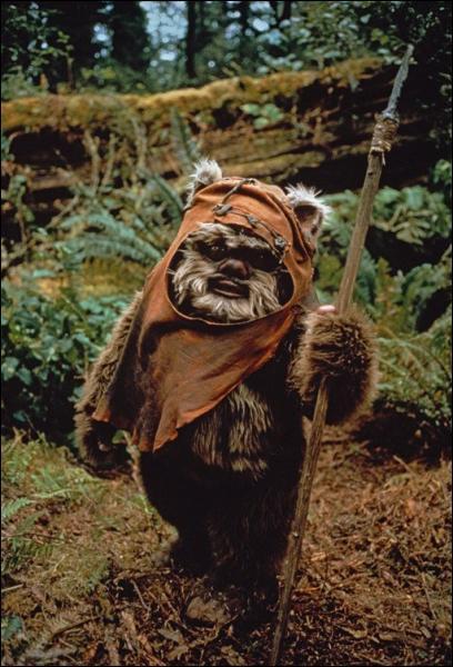Dans quel film de la saga de «La guerre des étoiles» fait-on connaissance avec les Ewoks ?