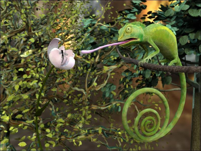Comment appelle-t-on les animaux qui se nourrissent d'insectes ?