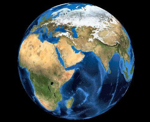 Quel est le volatile le plus répandu sur Terre ?