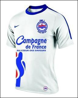 Champion de France de Ligue 2 , et donc promu en Ligue 1 :