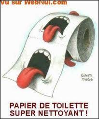 Pourquoi les Belges disent : 'on va à la toilette' et les Français : 'on va aux toilettes' ?