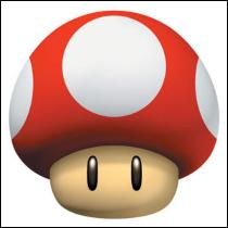 À quoi sert ce champignon rouge ?