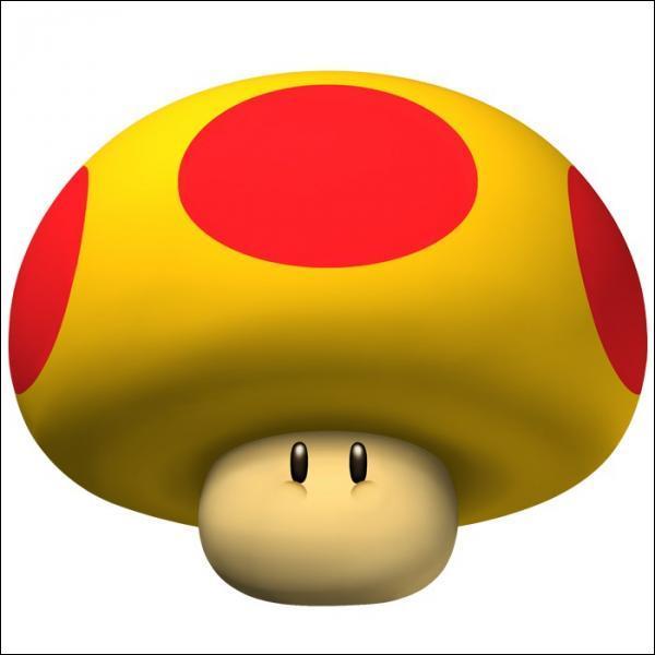À quoi sert ce champignon ?
