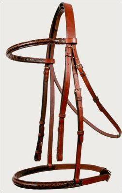 Les bases de l'équitation