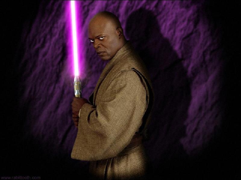Mace Windu fut un apprenti de Yoda ?