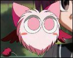 Comment s'appelle la petite boule de poils rose qui suit Zoey ?