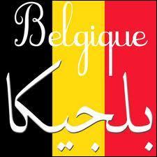 Pourquoi les Belges ont-ils les frites, et les Arabes le pétrole ?