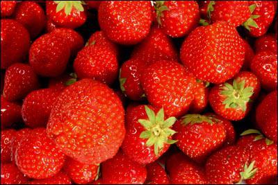 La fraise est un. .