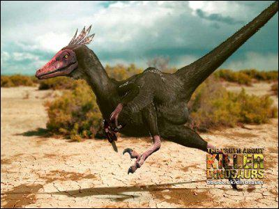 Le Velociraptor était ...