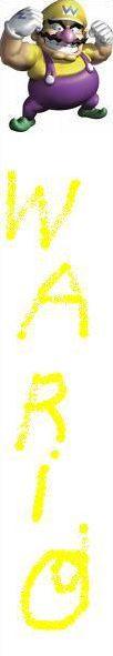 Les personnages de Mario Kart Wii