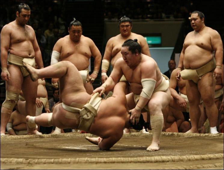 Qu'est la 'mawashi' pour les combattants de sumo ?