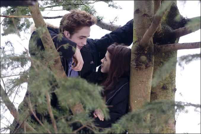 Dans Fascination, que dit Edward à Bella avant de monter dans l'arbre ?