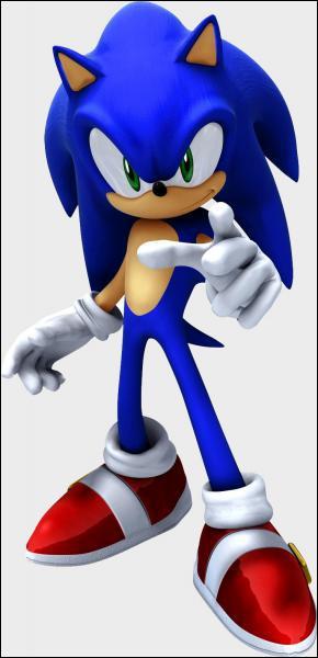 Qu'est-ce que Sonic aime le plus au monde ?