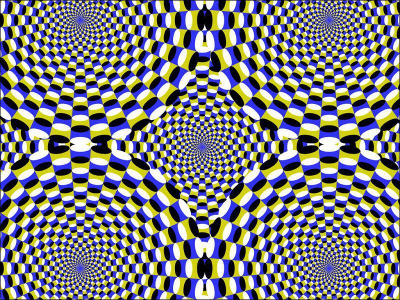 Fixez le point bleu du milieu ! Que se passe-t-il ?