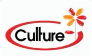 Quel logo est détourné par 'culture Pub ' ? N°3