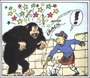 Et le gorille en question c'est ...