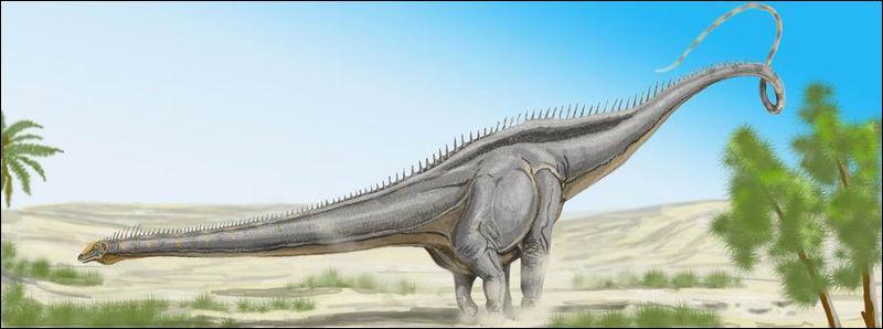 Les plus grands reptiles pr historiques quiz qcm reptiles - Quel est le plus grand port d afrique ...