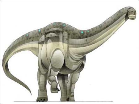 Quel est le pluis lourd dinosaure (220 tonnes) ?