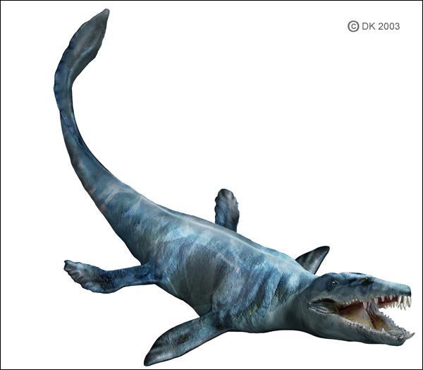Quel est le plus grand mosasaure (18 mètres) ?