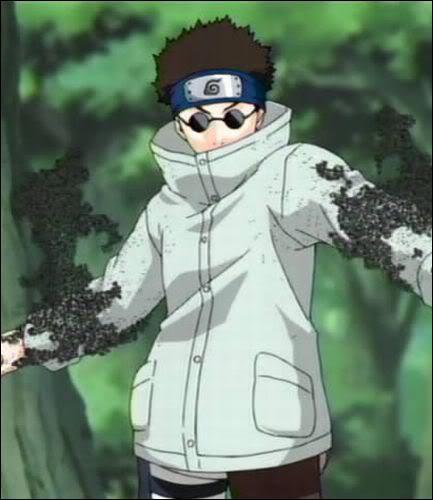 Il fait équipe avec Hinata et Kiba et c'est aussi le ninja le plus secret de Konoha, j'ai nommé :