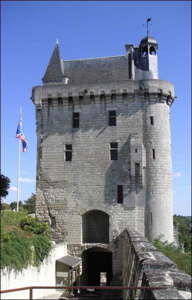 Dans quelle ville d'Indre-et-Loire se trouve ce château ?