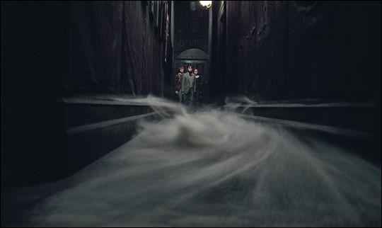 Par quoi Harry, Ron et Hermione sont-ils accueillis lorsqu'ils entrent dans cette demeure ?