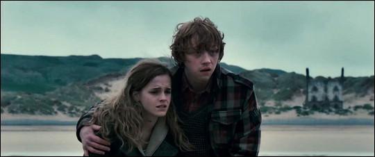 Dans quel lieu se situent Ron et Hermione ?