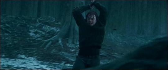 Qu'est ce que Ron s'apprête à détruire ?
