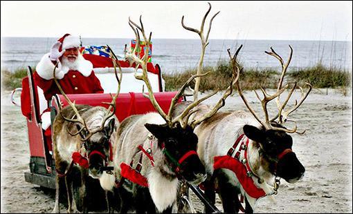 Les rennes du Père Noël tirent son traineau lors de la distribution des cadeaux et sont donc d'une importance capitale. Pouvez-vous me dire comment on dit 'renne' en anglais ?