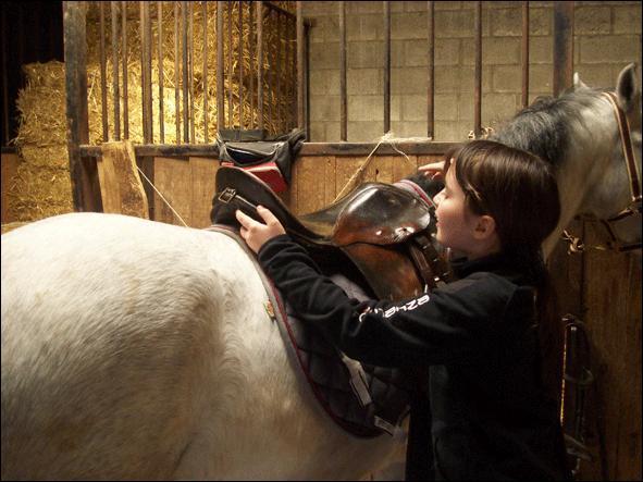 Un cheval bien dégarroté signifie