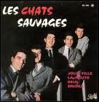De quelle ville nous vient le Twist chanté par Les Chats Sauvages ?