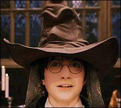 Qui décide dans quelle maison sont envoyés les sorciers ?