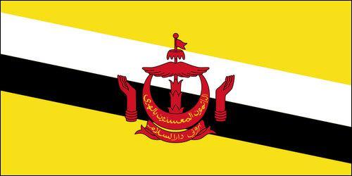 Enfin quelle est la capitale du pays représenté par le drapeau ci-dessous ?