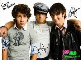 """Dans """"Jonas"""", combien et qui sont les frères Jonas ?"""