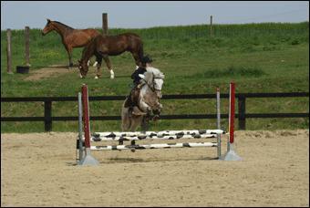Pour sauter avec le cheval, il faut regarder droit devant soi.