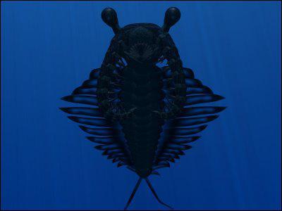 Comment s'appelle cet animal préhistorique ?