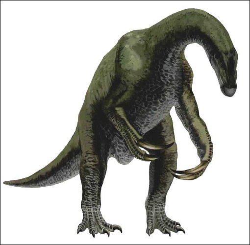 Comment s'appelle ce dinosaure ?