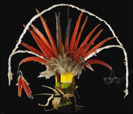 Cette coiffe appelé «Orok» est composée de fibres végétales, cotons, élytres de scarabée, peau de singe et de plumes. Elle a été acquise dans l'État du Para :