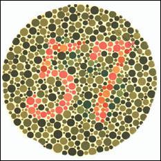 Quel est le nombre présent dans cette image ?