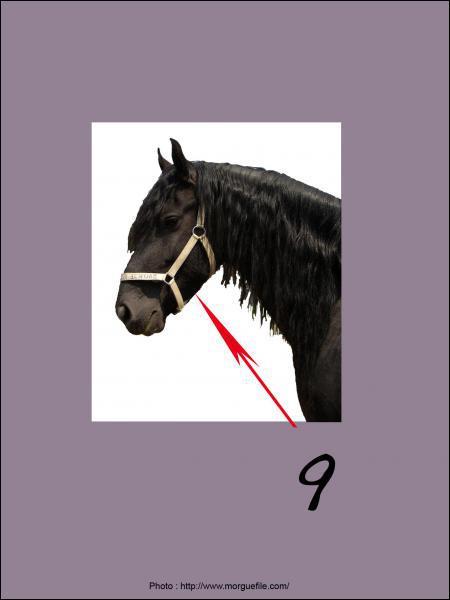 A quoi correspond le 9 sur la photo ?