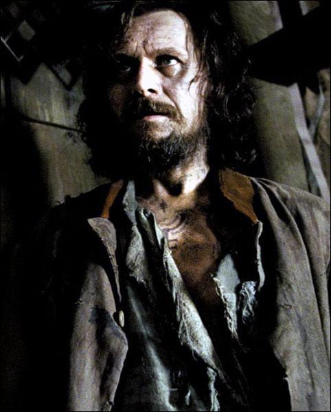En quoi se transforme Sirius Black ?